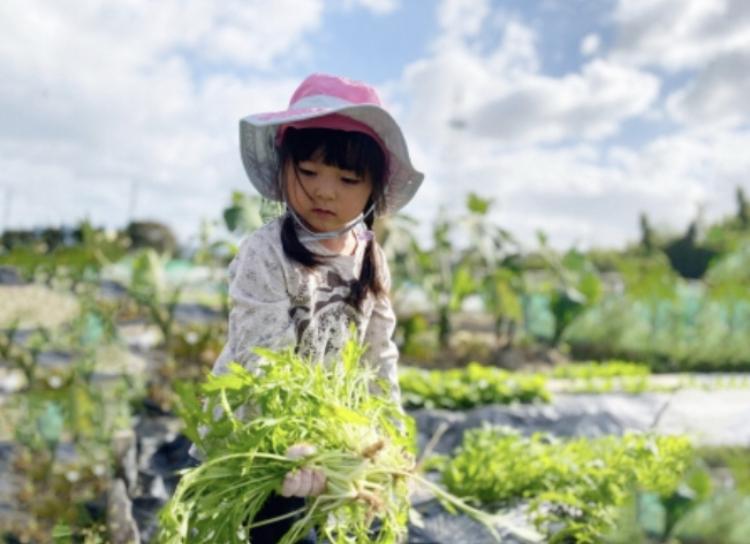 祥平ファームの画像